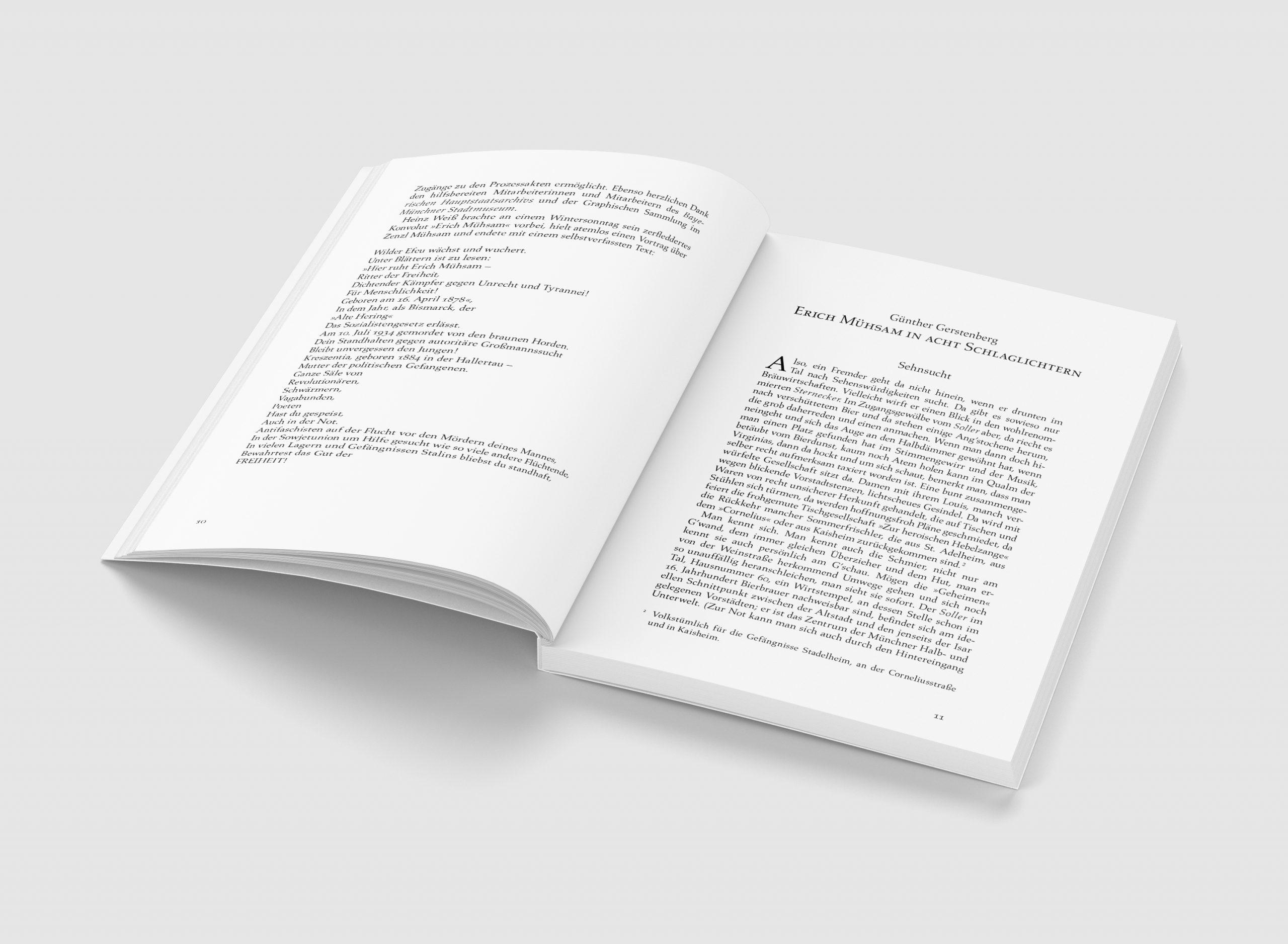 Blick ins Buch zu »Wir geben nicht auf!« von Erich Mühsam