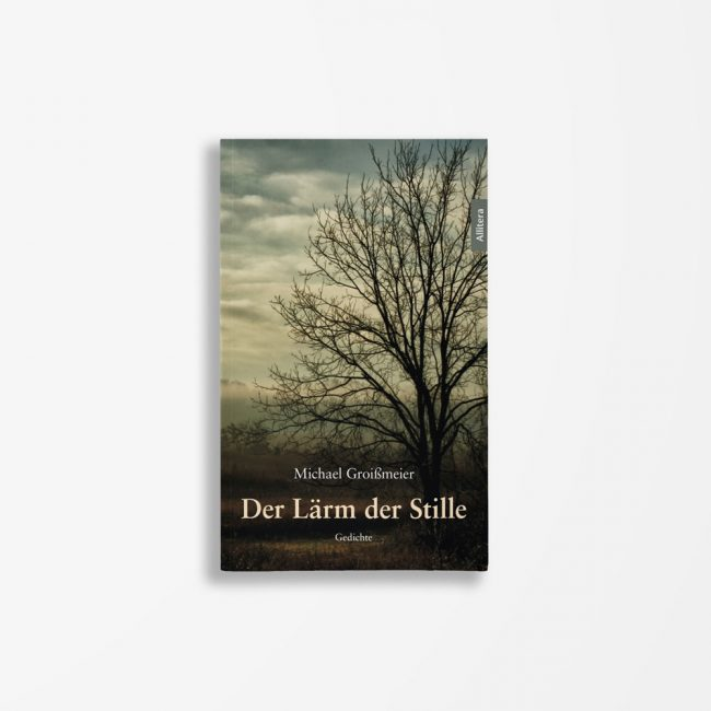 Buchcover Michael Groißmeier Der Lärm der Stille