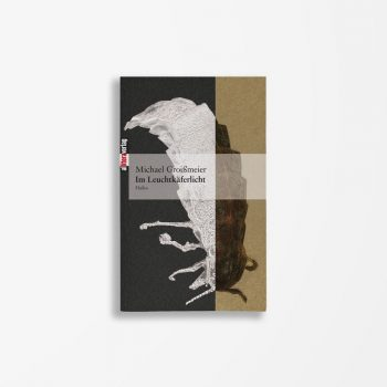 Buchcover Michael Groißmeier Im Leuchtkäferlicht