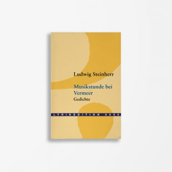 Buchcover Ludwig Steinherr Musikstunde bei Vermeer